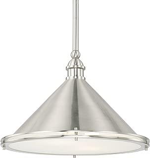 Capital Lighting 312221BN Two Light Pendant