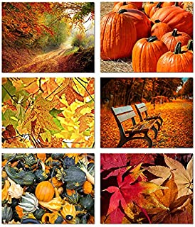 Autumn Scenes - Blank Greeting Cards - 6 Fall Designs - Includes Card and Envelopes - 5.5