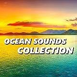 Perfect Shoreline Beach Sounds