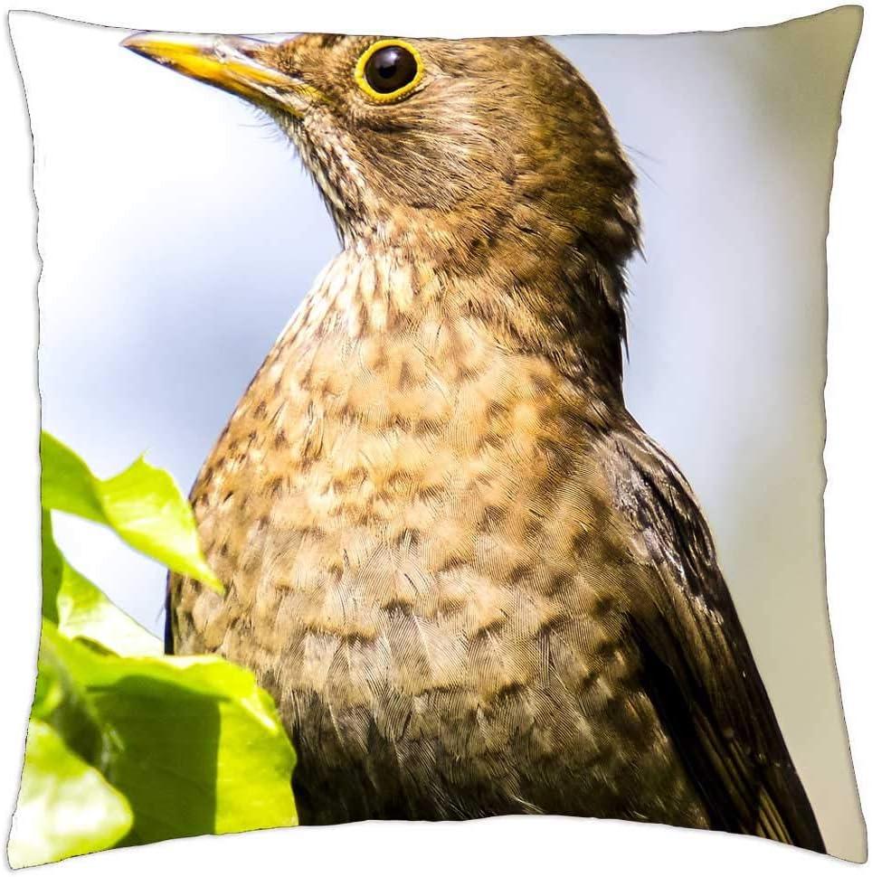 New color LESGAULEST Throw Pillow Cover 16x16 Bird Song inch - Excellence Blackbird