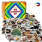 MAGDUM Imanes nevera niños Animales del Bosque + Marinos + Granja + Zoo +Aves - 110 Grandes imanes bebes - Animales de juguete - Juguetes niños 3 años - Juegos educativos niños 3 años - Nevera juguete