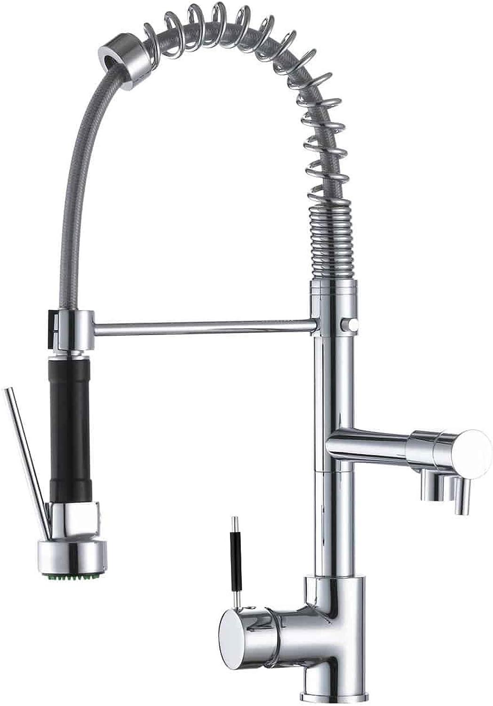 Takestop Spültischarmatur ESY_52922 Doppeldusche ausziehbar Waschbecken Stahl Küche Doppellochgriff Profi Industrial RUBINETTERIA