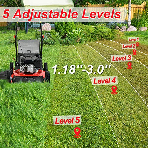 PowerSmart Lawn Mower, 21-inch & 170CC, Gas Powered Self-Propelled Lawn Mower with 4-Stroke Engine, 3-in-1 Gas Mower in Color Red/Black, 5 Adjustable Heights (1.2''-3.0'' ), DB2521SR