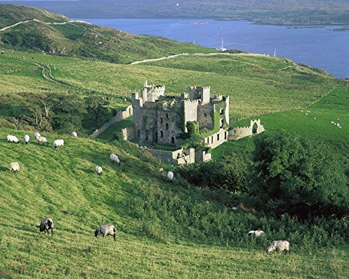 The Irish Image Collection/Design Pics – Clifden Castle Co Galway Ireland; 19Th Century Gothic Revival Style Castle Photo Print (43,18 x 33,02 cm)