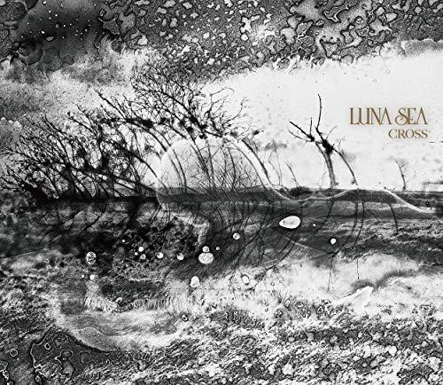 CROSS(初回限定盤B)(ボーナスCD付)(DVD付)