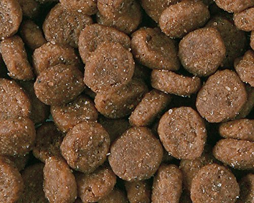 ナチュラルバランスグリーンピー&ダックキャットフード2.2ポンド(1kg)