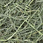 Petlife Oxbow Orchard Grass Hay for Small Pet, 1.13 kg 14