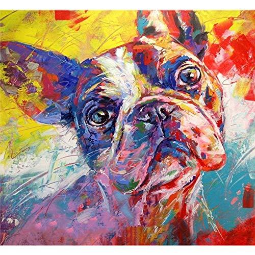 HQKNIGHT Dipingere con i Numeri Kit su Tela Pittura , Pittura a Olio Acrilica Fai-da-Te Bulldog Francese Doodle per Bambini e Adulti con Pennelli Senza Cornice Decorazione della Parete di Casa Regalo