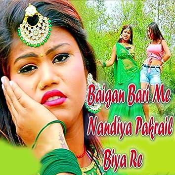 Baigan Bari Me Nandiya Pakrail Biya Re