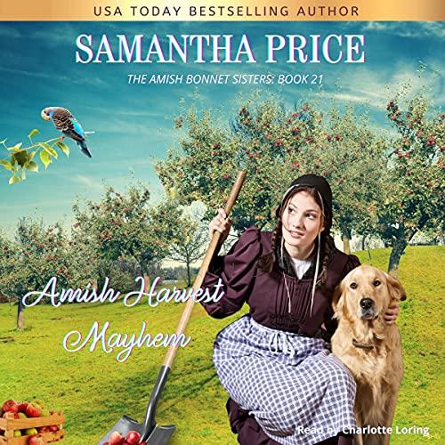 Amish Harvest Mayhem cover art