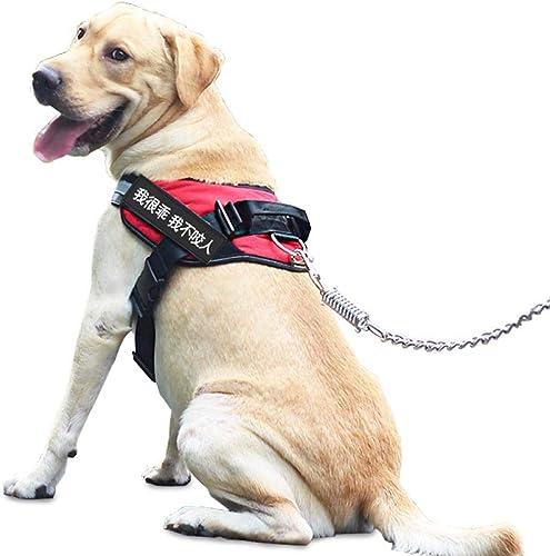 Los mejores precios y los estilos más frescos. 1 linda casa de mascotas Keji correa para el el el pecho correa de perro correa de perro correa de perro perro pequeño ley canino cachorro perro Teddy cadena de perro cadena de perro rojo M (busto 55-7  perfecto
