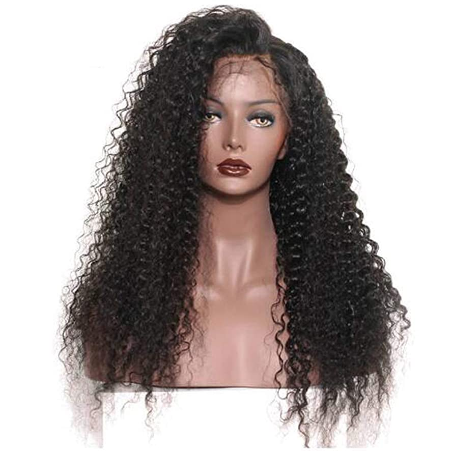 が欲しいビジター乳女性のレースフロントかつら人間の髪と赤ちゃんの毛合成ブラジルボディ波バージン毛150%密度黒24インチ