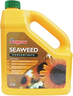 Amgrow 60223 Seaweed Liquid Concentrate