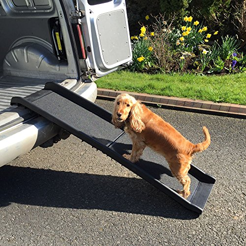 RayGar Dog Pet Ramp