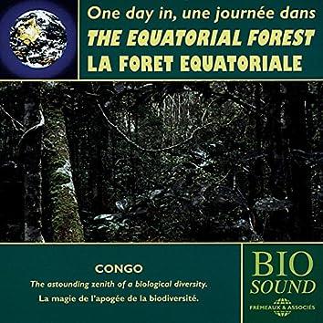 The Equatorial Forest of Congo - La forêt équatoriale