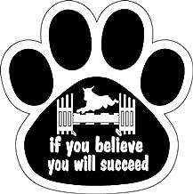 dog agility car magnets