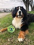 GF Pet <span class='highlight'>Dog</span> <span class='highlight'>Ball</span> <span class='highlight'>Toy</span> Play <span class='highlight'>Ball</span> with Funny Sound Keeps <span class='highlight'>Dog</span>s Happy All Day, Wobble Wag <span class='highlight'>Giggle</span> <span class='highlight'>Ball</span> <span class='highlight'>Toy</span> for <span class='highlight'>Dog</span>