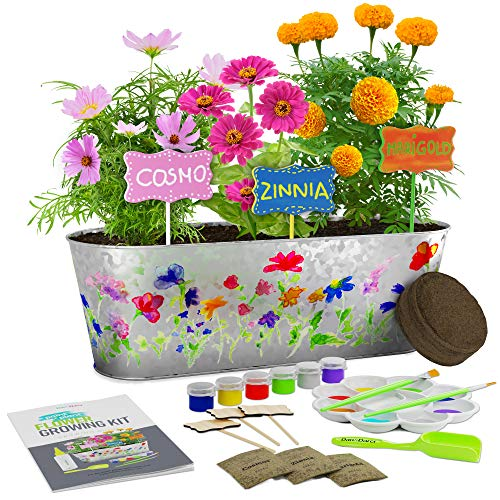 Paint & Plant Flower Growing Kit - Kids...