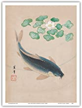 Carp with Water Flowers - Vintage Japanese Woodblock Print by Shisui 1900's - Master Art Print - 9in x 12in