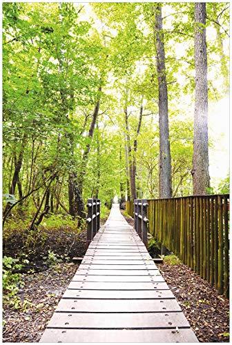 Wallario Glasbild Spaziergang im Wald Holzweg über einen Fluss - 60 x 90 cm in Premium-Qualität: Brillante Farben, freischwebende Optik