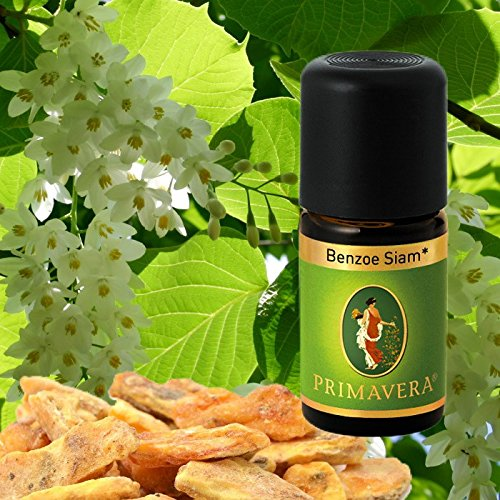 Primavera Bio Duftöle für Aromatherapie zu je 5ml, Duft:Benzoe Siam Bio