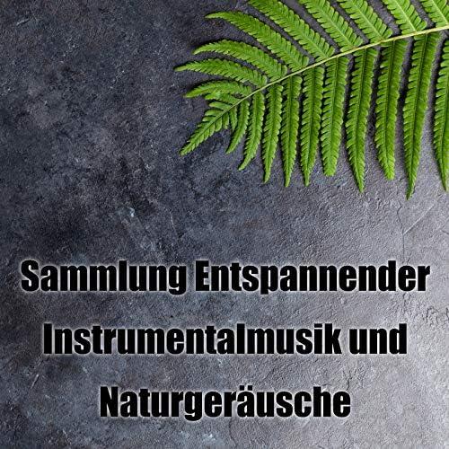 Helande Instrumentalmusik Akademi
