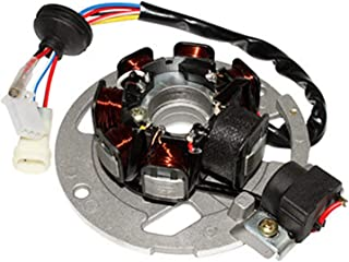P2R (motorisiert) Stator für Scooter, anpassbar, CPI 50 Aragon, Hussar, Oliver, Popcorn (7 polig – mit Platten)  P2R