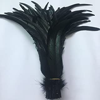 Shekyeon 16-18inch 40-45cm Rooster Coque Tail Feather for Costume Decoration Pack of 20 (Black)