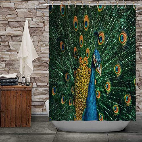 Hitecera Peacock n Peafowl,Bath Curtain Modern Bathroom Accessories, 2015 Machine Washable 72''Wx96''H