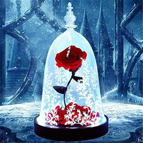 Rosa fresca conservada con caja. Ideal como regalo para San Valentín, aniversarios, cumpleaños, etc. De JaneDream