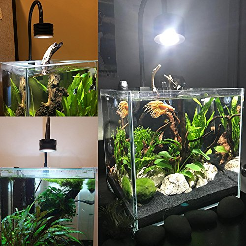 Lominie LED Aquarium Light, Saltwater Freshwater Fish Tank Light for Coral, Planted Nano Aquarium Tank
