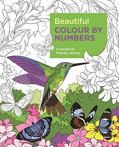 Beautiful Colour by Numbers (Arcturus Colour by Numbers Collection)