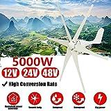 TQ 5000W Windgenerator