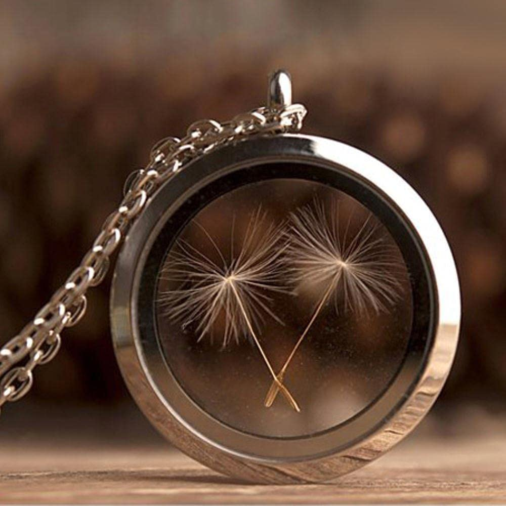 Recommended AIDEMEI Special price for a limited time 1Pc 30Mm Stainless Steel Necklace Locket Dandelion Seed