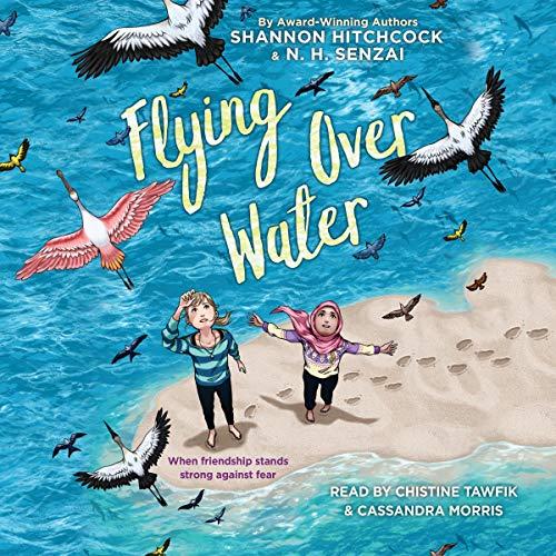 Diseño de la portada del título Flying Over Water