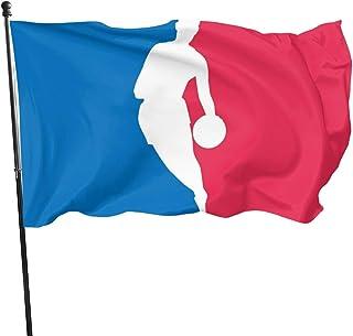 DJNGN NB-A American USA Bandera de EE. UU. 3x5 pies Banderas para Exteriores Rayas Cosidas Ojales de latón: Amazon.es: Jardín
