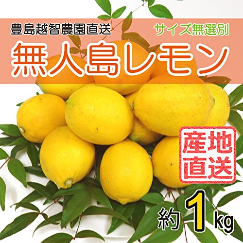 【農園直送】 広島産 無人島 レモン 約1kg 防腐剤不使用 ノーワックス 皮まで食べられます サイズいろいろ 国産レモン 越智農園