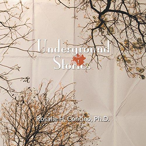 Underground Stories cover art