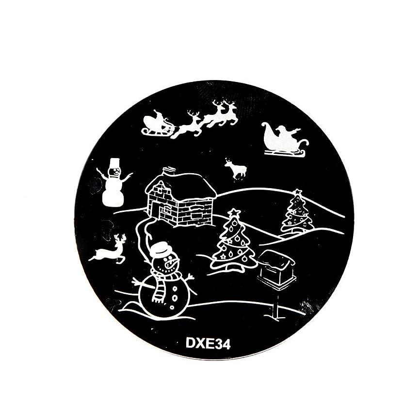家庭欠如旅[ルテンズ] スタンピングプレートセット クリスマス柄 ネイルプレート ネイルアートツール ネイルプレート ネイルスタンパー ネイルスタンプ スタンプネイル ネイルデザイン用品