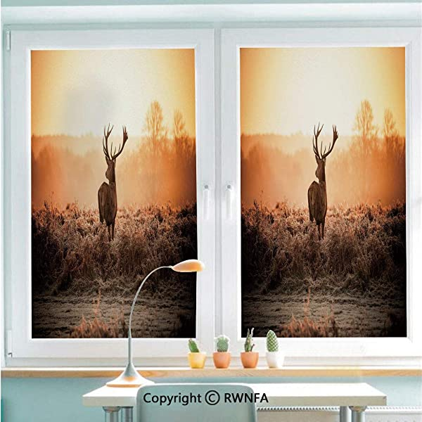 No Glue Static Cling Glass Sticker Red Deer In The Morning Sun Wild Nature Scenery Countryside Rural Heathers Decorative Decorative 22 8 X 35 4 For Home Office Brown Orange