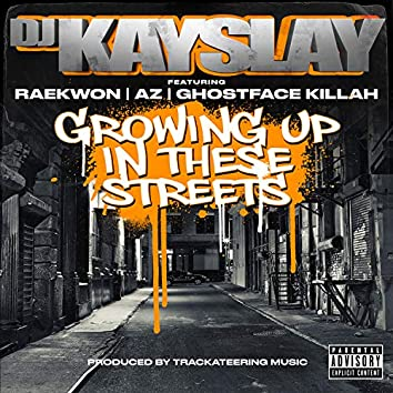 Growing Up In These Streets (feat. Raekwon, AZ & Ghostface Killah)