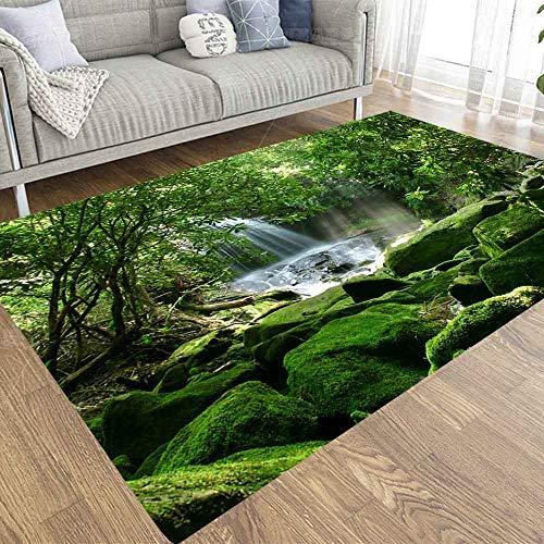 SBSNBU 2 x 3 alfombras de área fragmentadas de rayo en Parque Británico Canadá Columbia, alfombra adecuada para niños y mascotas, para decoración de interiores y salas de estar