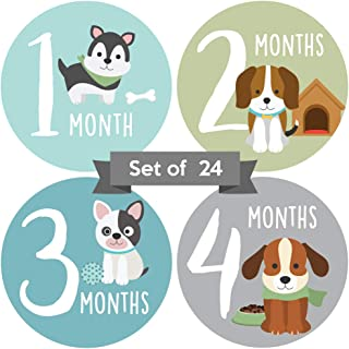 Baby Monthly Stickers Boy or Girl | Baby Milestone Stickers Boy | Gender Neutral Baby Milestone Stickers | Unisex Stickers for Baby | Animal Newborn Stickers | Dog Newborn Month Stickers (Set of 24)