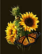 SAROW DIY 5D Diamond Painting by Number Kit, Full Diamond Crystal Cross Embroidery Art Crafts Decoration for Family Wall(11.8 x 15.8 inches,Sunflowers and Butterfly)