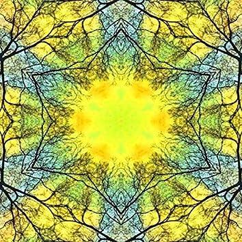 Head Towards the Sun