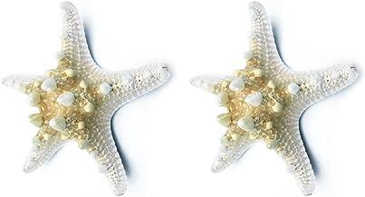 le Projet de Bricolage D/écor la F/ête /à Th/ème de Plage la D/écoration Int/érieure Yixuan 20pcs 8cm /Étoile de Mer en R/ésine Coquilles d/étoile de mer Blanche pour la D/écoration de Mariage