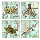 bestpricepictures Bild auf Leinwand Thema Meer Krabbe Krake