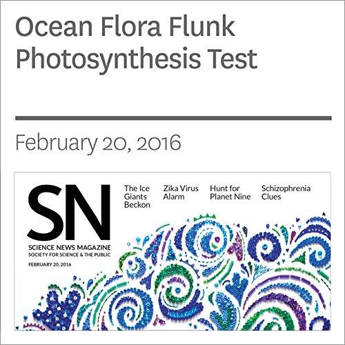 Ocean Flora Flunk Photosynthesis Test cover art