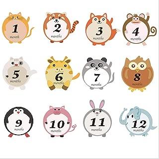 Baby Monthly Milestone Stickers for Newborns First Year Photo Albums Holidays & Achievement Sticker 30pcs (Cute Animal)