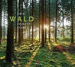 Forstkalender 2016